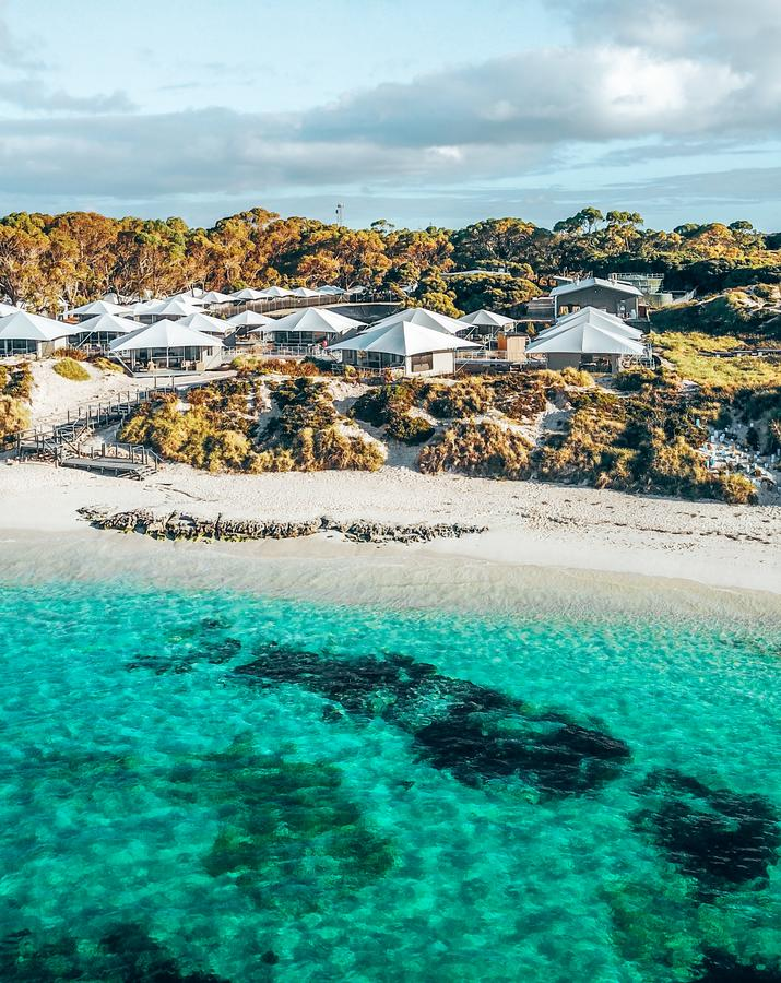 Discovery Rottnest Island - Accommodation Nelson Bay